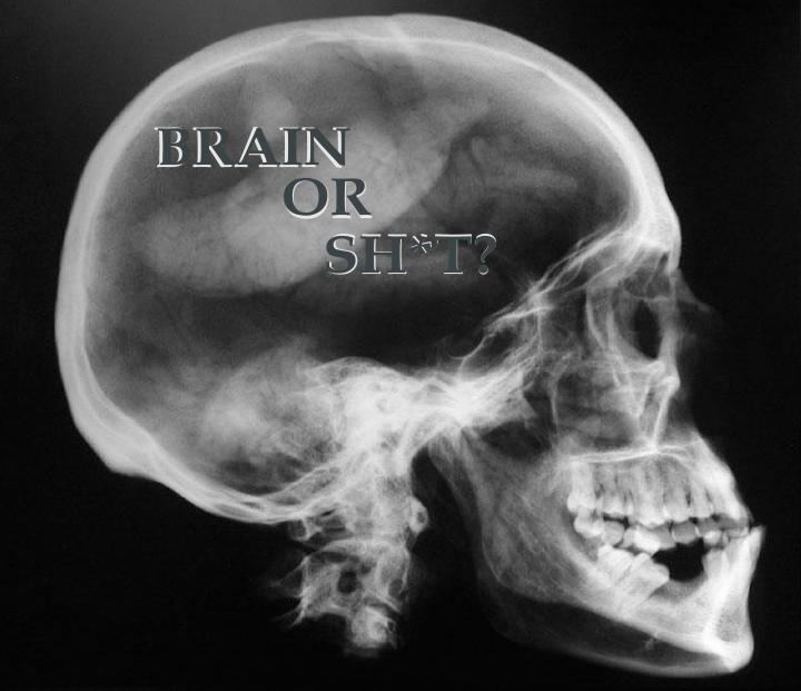 brain or sh*t?